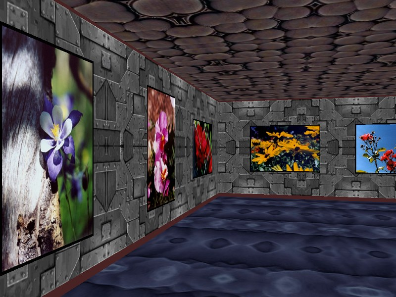 Click to view Phota Flowers Screensaver 3.8.1 screenshot