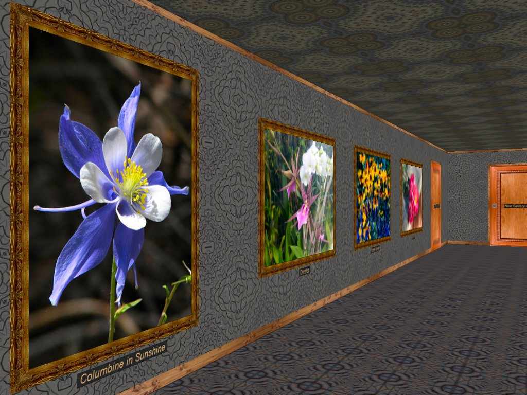 Phota Flowers Screensaver Screenshot